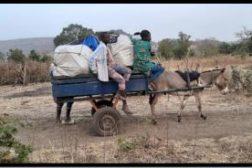 Reisebrev fra Mali februar 2020